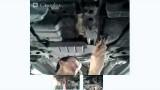 Замена фильтра АКПП Mitsubishi Lancer 10